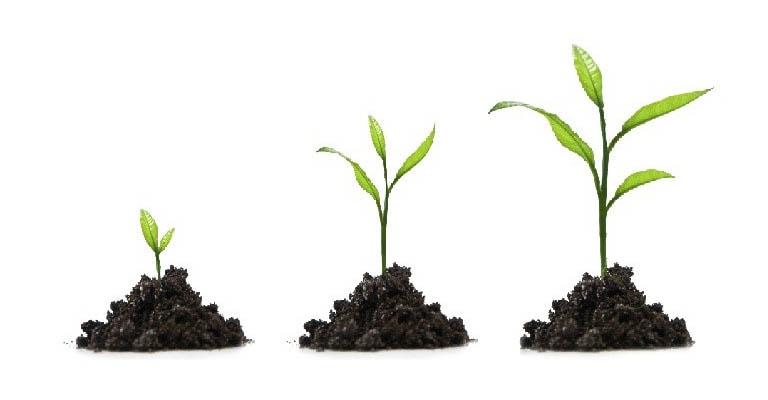 Wellness4me, la crescita personale